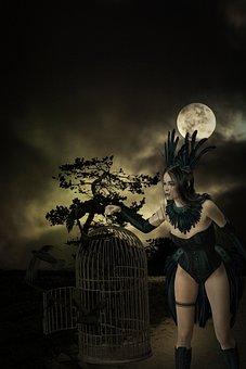 Darkness, Moon, Full Moon, Dark, Fantasy, Birds, Cage