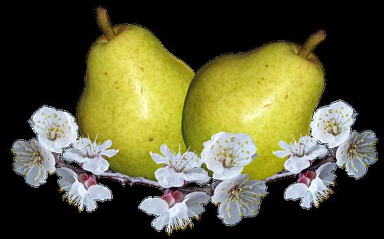 Fruit, Pears, Pear Blossom, Nutrition, Food