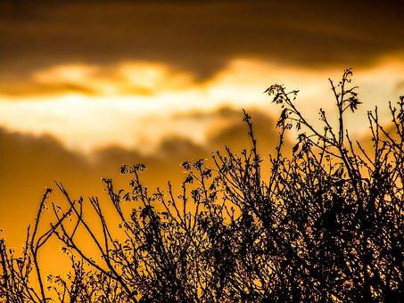 Sunset, Dawn, Nature, Sun, Outdoors, Reus, Landscape