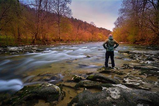 Nature, Autumn, Waters, Tree, River, Landscape, Season