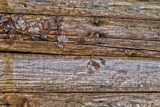 Woods, Board, Wooden Board, Leaves, Wood Element