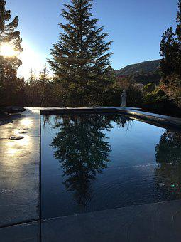 Tree, Nature, Water, Reflection, Pool, Design