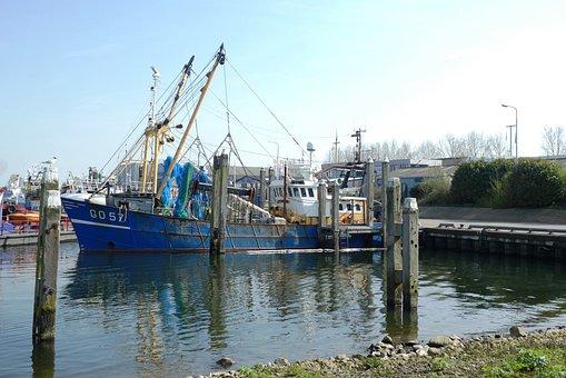 Fishing Boat, Craft, Port, Transport, Job, Fish