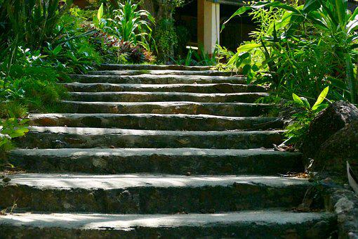 Nature, Leaf, Garden, Stairs, Gradually, Tropical