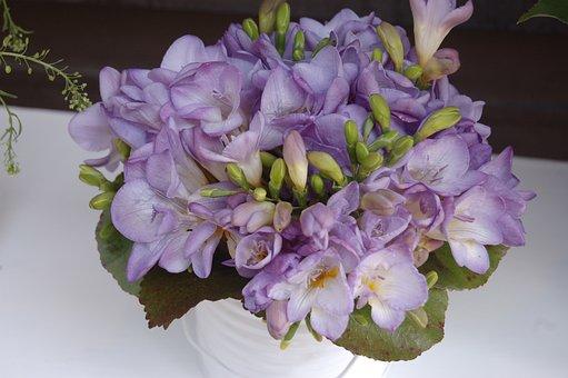 Flower, Plant, Nature, Floral, Leaf, Bouquet De Fleurs