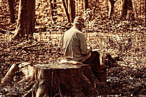Man, Artist, Elderly Man, Elderly Artist, Sitting