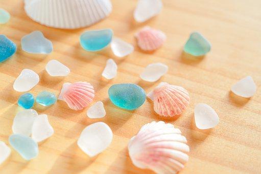 Shell, Sea Glass, Marin, Clams, Summer, Jetsam