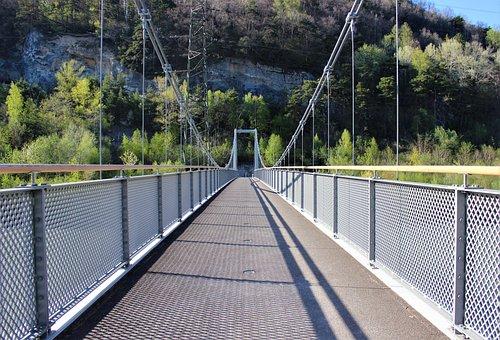 Bridge Fence, Tree, Wood, Nature, Railing, Mountain