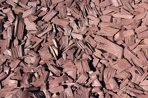 Wood, The Bark, The Background, The Structure Of The