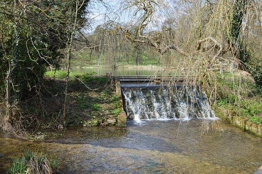 Water, Nature, River, Wood, Tree, Stream, Waterfall