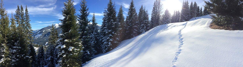 Saalbach, Saalbach Hinterglemm, Austria, Ski, Sun