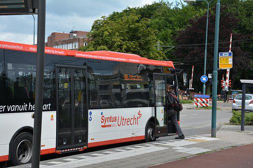 Bus, Transport, Car, Traffic, Vehicle, Public, Bus Stop