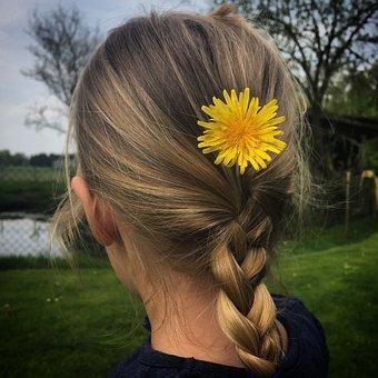 Human, Nature, Girl, Flower, Dandelion, Plait, Child