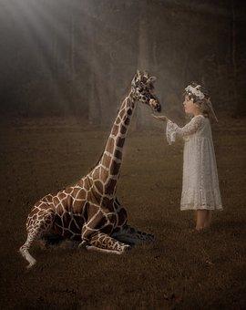 Giraffe, Nature, Fantasy, Portrait, Wildlife, Girl