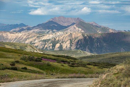 Alaska, Denali, National Park, Mountain, Nature