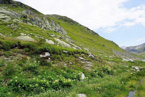 Nature, Landscape, Grass, Mountain, Panorama, Summer