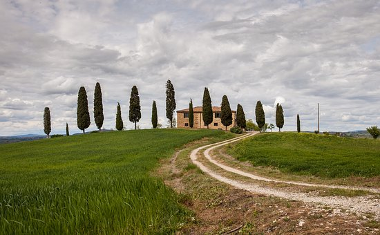Landscape, Lawn, Outdoors, Travel, Nobody, Tuscany