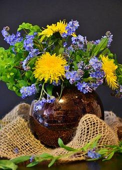 Forget Me Not, Dandelion, Flower, Nature, Plant, Leaf