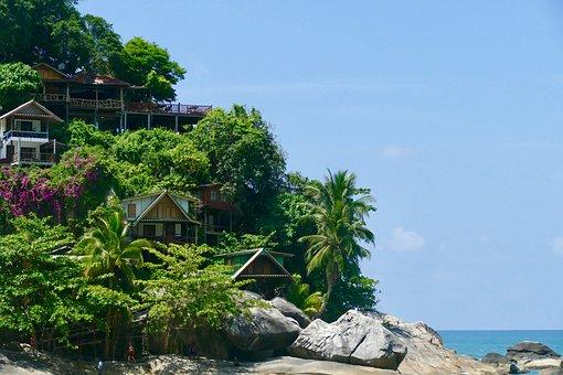 Nature, Summer, Tree, Travel, Tropical, Sky, Coast