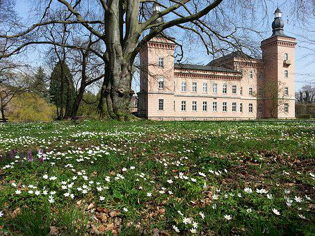 Tree, Flower, Building, Architecture, Travel, Spring