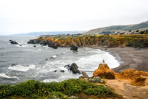 Seashore, Water, Nature, Sea, Landscape, Sonoma Beach