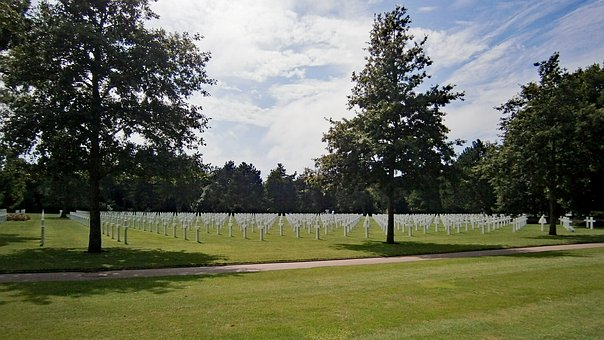Cross, White Crosses, War, Cemetery, Remembrance Day
