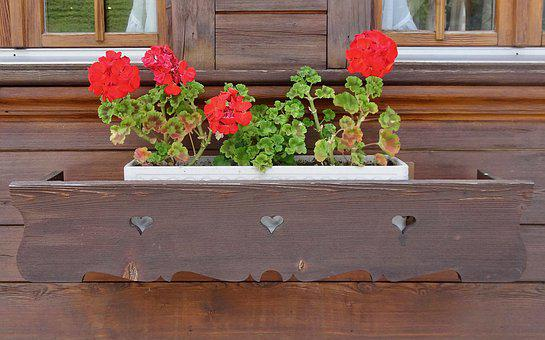 Flowers, Decoration, House, Wooden, Simple, Box