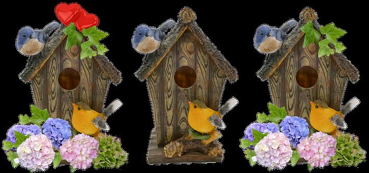 Aviary, Spring, Deco, Nesting Box, Hatching, Hydrangeas