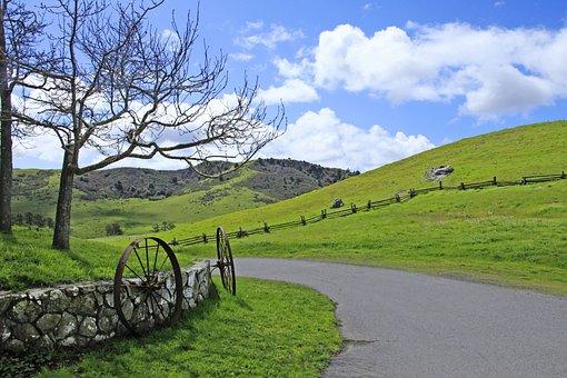 Landscape, Nature, Grass, Tree, Sky, Road, Rural