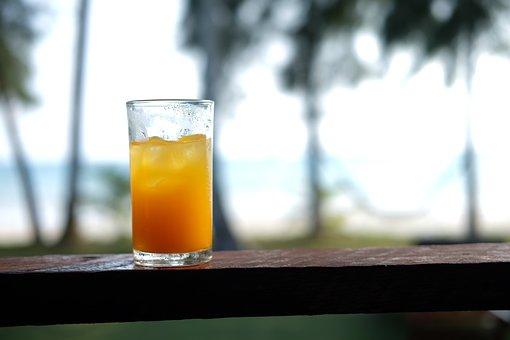 Orange Juice, Tree, The Grid, Wood