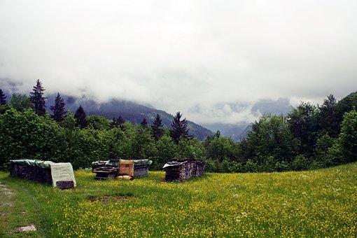 Upper Bavaria, Reit Im Winkl, Alpine Hiking