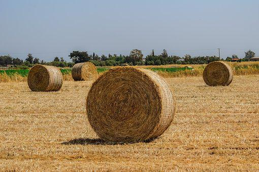 Hay, Straw, Bale, Agriculture, Rural, Countryside