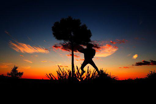 Twilight, Sky, Clouds, Field, Tree, Silhouette, Lights
