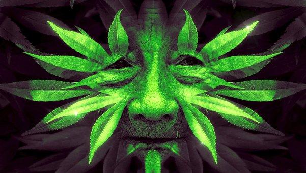 Fantasy, Face, Leaves, Green, Human, Nature, Portrait