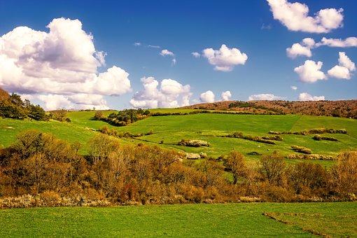 Meadow, Hill, Landscape, Nature, Green, Sky, Swinging