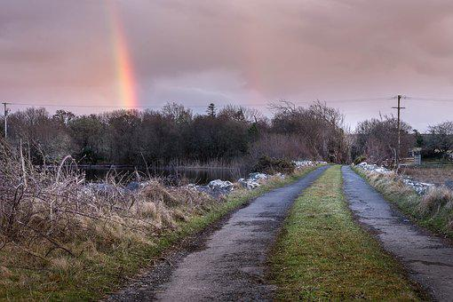 Nature, Landscape, Outdoors, Tree, Road, Rainbow, Dawn