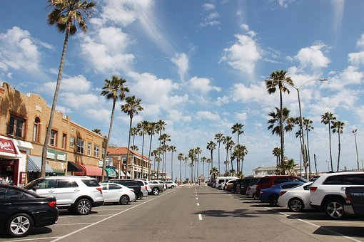 Travel, Car, Street, Palm, Road, Tourism, City