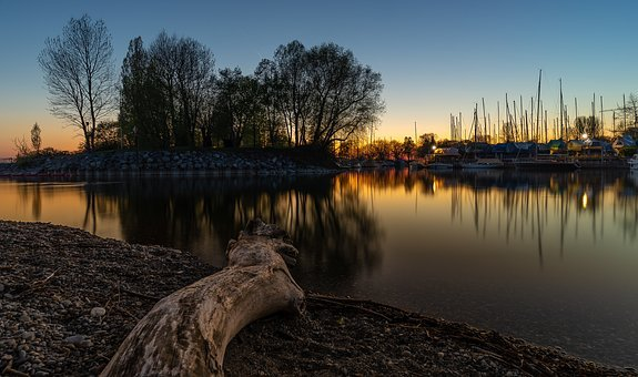 Reflection, Waters, Sunset, Lake, Log, Drift Wood