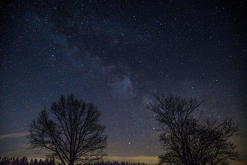 Tree, Landscape, Sky, Nature, Panoramic, Dark, Moon