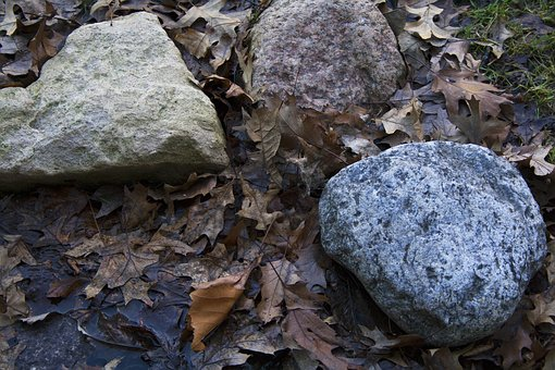 Nature, Stone, Rock, Outdoors, Moss, Wood, Environment