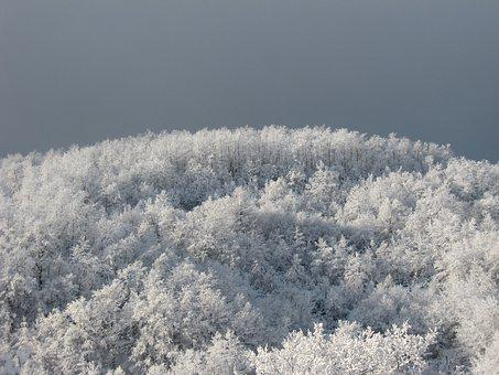 Frost, Winter, Snow, Frozen, Cold, Nature, Weather, Ice