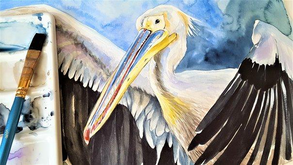Pelican, Bird, Animal, Painting, Watercolor, Art, Brush