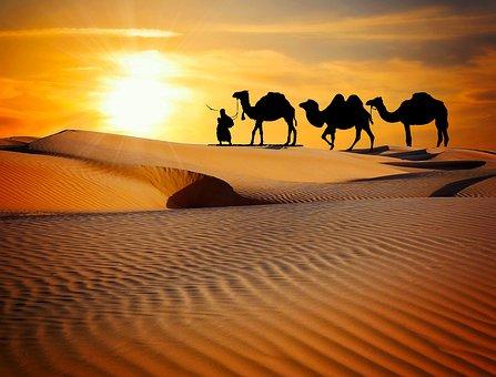 Caravan, Desert, Safari, Dune, Camels, Ride, More