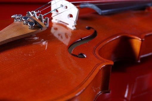 Classic, Instrument, Wood, Violin, String, Music