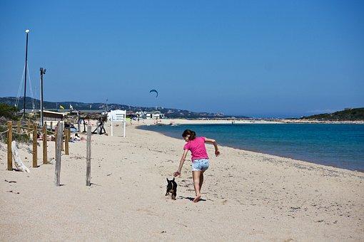 Girl, Dog, Beach, Sand, Sea, Waters, Costa, Summer, Fun