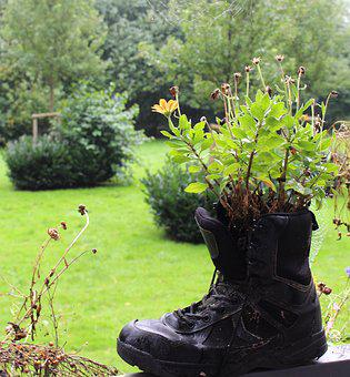 Plant, Flowers, Boots, Nature, Summer, Blossom, Bloom