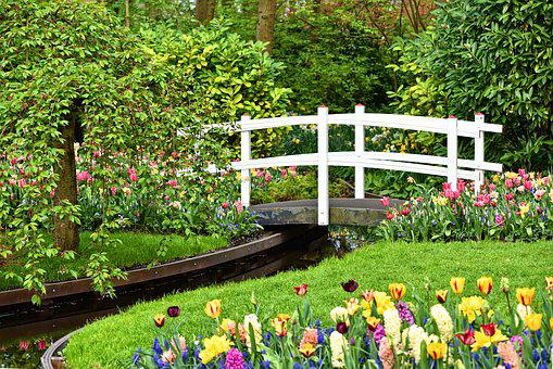 Wooden Bridge, White Bridge, Bridge, Brook, Garden