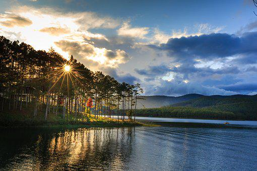 Outdoor, Forest, Theung, Dalat, Vietnam, Travel, See