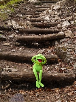 Kermit, Frog, Sit, Stairs, Gradually, Blind