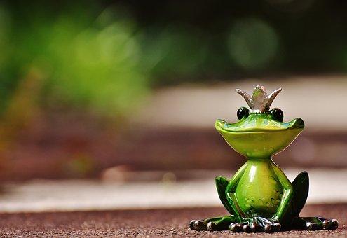 Frog, Frog Prince, Crown, Fig, Cute, Funny, Sweet, Fun